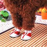 4 PCS Set Anti-slip Pet Dog Mesh Sports Shoes Pet Supplies