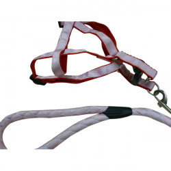 Justerbar Nylon Husdjur Hund Haulage Kabel Traction Bälte Bröstband
