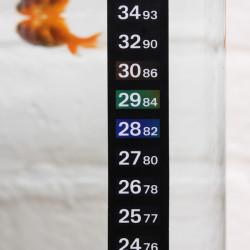 Boyu BT-05 Akvarium Digitalt Termometer for Akvarium