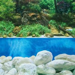 Dobbeltsidet Akvarium Landscape Plakat Akvarium Baggrund 60 * 30CM