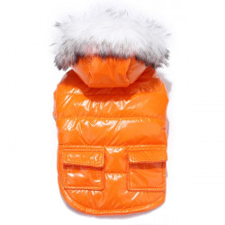 Pet Clothes Dog Water Proof Winter Polyester Hooded Cotton Coat