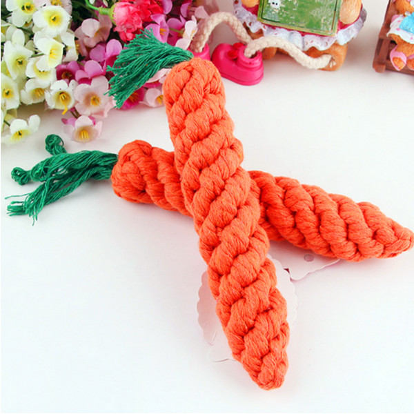 Pet Dog Hamster Guinea Pig Rabbit Straw Carrot Chew Play Toy Pet Supplies
