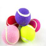 Husdjur Hund Leksak Balls Hollow Tennis Husdjurstillbehör