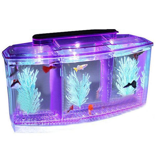 Kleine Aquarium Mini LED Licht kämpfende Fisch Behälter Fisch Hatch Behälter Haustierzubehör
