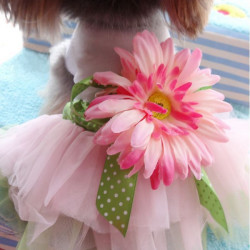 Summer Dog Dress Sunflower Skirt Puppy Dog Princess Lace Dress Skirt