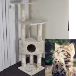 (USA Lager) Cat Condo Kratzbrett Pet House Klettergerüst Kätzchen Spielzeug