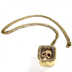 Vintage Bronze Skull Head Case Pendant Chain Necklace Jewelry