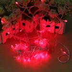 100 LED 10m Red String Decoration Light 110V 220V Holiday Lights