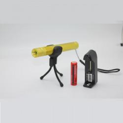 LT HJG0084 Zoom 532nm grüne Laser Zeiger Gold 1x18650 (1 mW / 5 mW)