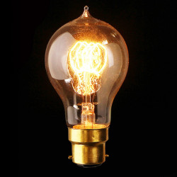 B22 110V/220V 40W A19 23 Anchors Edison Filament Incandescent Bulb