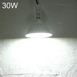 B22 30W SMD 5730 220V 60 LED Varm Hvid / Hvid Pære Workshop Lampe