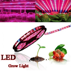 14W 5050SMD LED Strip Light Plant Grow Hydroponic Waterproof 12V