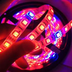 14W Vattentät 5050SMD LED Slinga Ljusna Röd / Blå 7: 1 12V