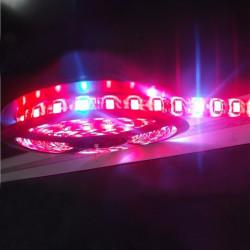 14W Vattentät 5050SMD LED Slinga Ljusna Röd / Blå 8: 1 12V