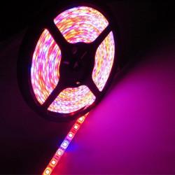 15W Vandtæt 5050SMD LED Bånd Lysbånd Vækstlampe Rød / Blå 5: 1 12V