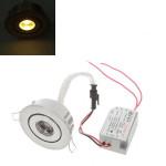 1W 90LM 3500K Warm White LED Ceiling Light With LED Driver 85-265V LED Lighting