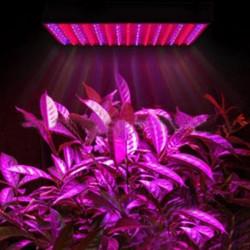 20W 1500LM Red/Blue Energy Saving 324LED Grow Light AC 85-264V