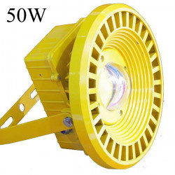 50W IP65 LED Flood Light Explosion-proof Outdoor Street Light