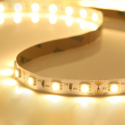 5M White/Warm White SMD 2835 300 LED Strip Light Non-Waterproof 12V