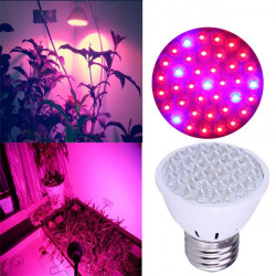 E27 2W 80LM 38 LED Grow Light Plant Lamp Hydroponic AC 180-240V