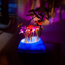 LED Light-controlled Potted Night Light Colorful Plants Induction Lamp