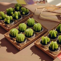 Mini Cactus Plant Stearinlys 6stk / Lot Party Jul Bryllup Home Decor