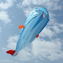 Outdoor Entertainment Kites 3D Huge Parafoil Giant Dolphin Blue Kites