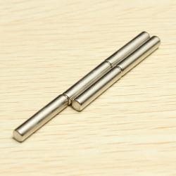 5st D4x20mm N42 Neodymiummagneter Rare Earth Stark Magnet