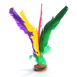 Assorted Feather Chinese Traditional Jianzi Kick Shuttlecock Sport