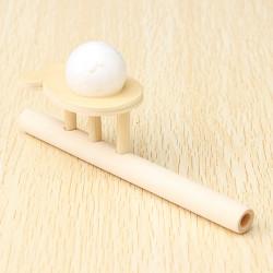 Kinder pädagogisches Spielzeug aus Holz treiben Ball Spiel