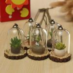 Kreative Plexiglas Grass Harz Kleiner Anhänger Flasche mit Halskette Spiel