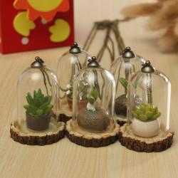 Creative Plexiglas Grass Resin Lille Vedhæng Bottle med Halskæde