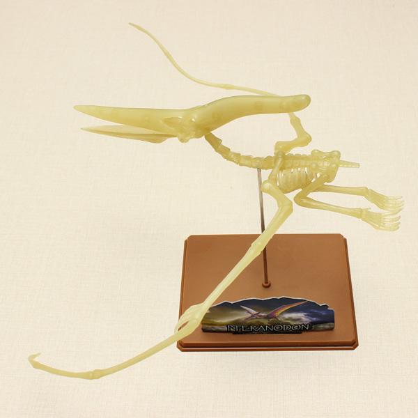 Eastcolight DIY Luminous Pteranodon Dinosaurier Fossil Modell pädagogisches Spielzeug Lernspiele