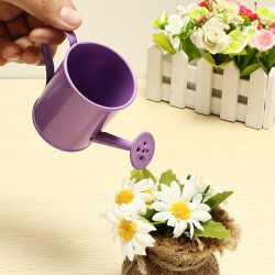 Mini Blomma Tin Garden Hink Plåtask Foto Props