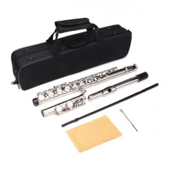 New LADE Silver Plated 16 Closed Holes C Key Flute