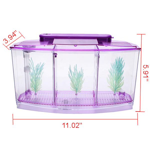 Buy small aquarium mini led light fighting fish tank fish for Fish tank review